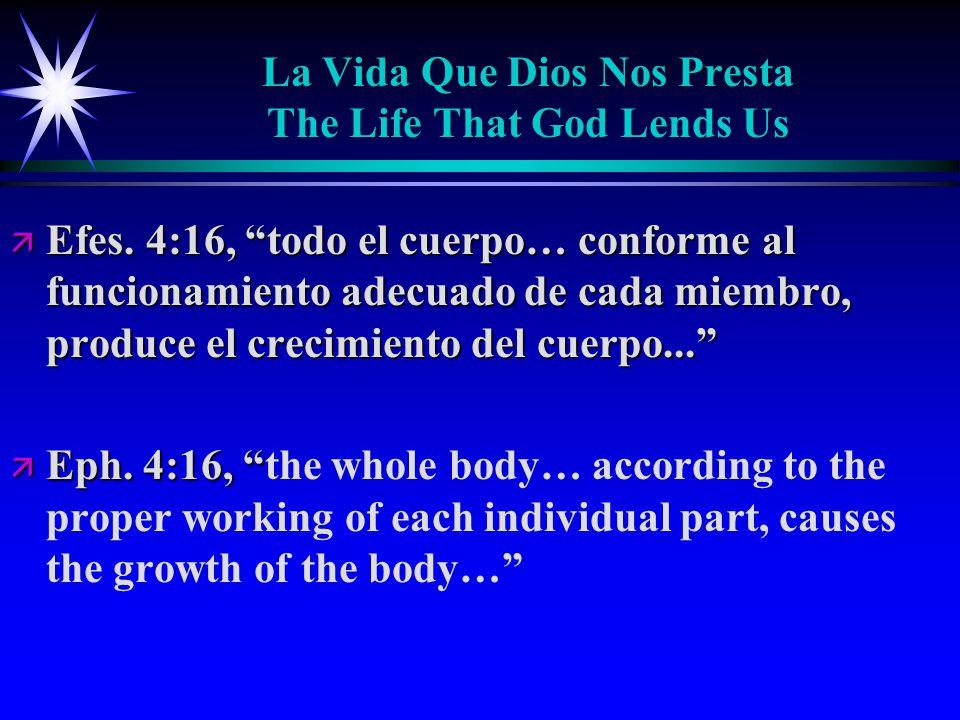 La Vida Que Dios Nos Presta The Life That God Lends Us ä Efes.