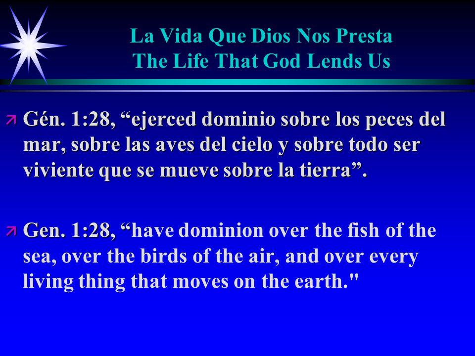 La Vida Que Dios Nos Presta The Life That God Lends Us ä Gén.