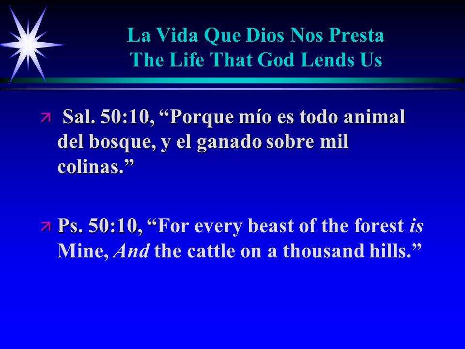 La Vida Que Dios Nos Presta The Life That God Lends Us ä Sal.