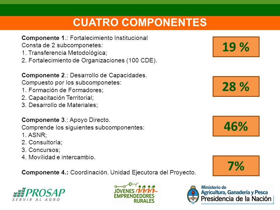 CUATRO COMPONENTES Componente 1.: Fortalecimiento Institucional Consta de 2 subcomponetes: 1.