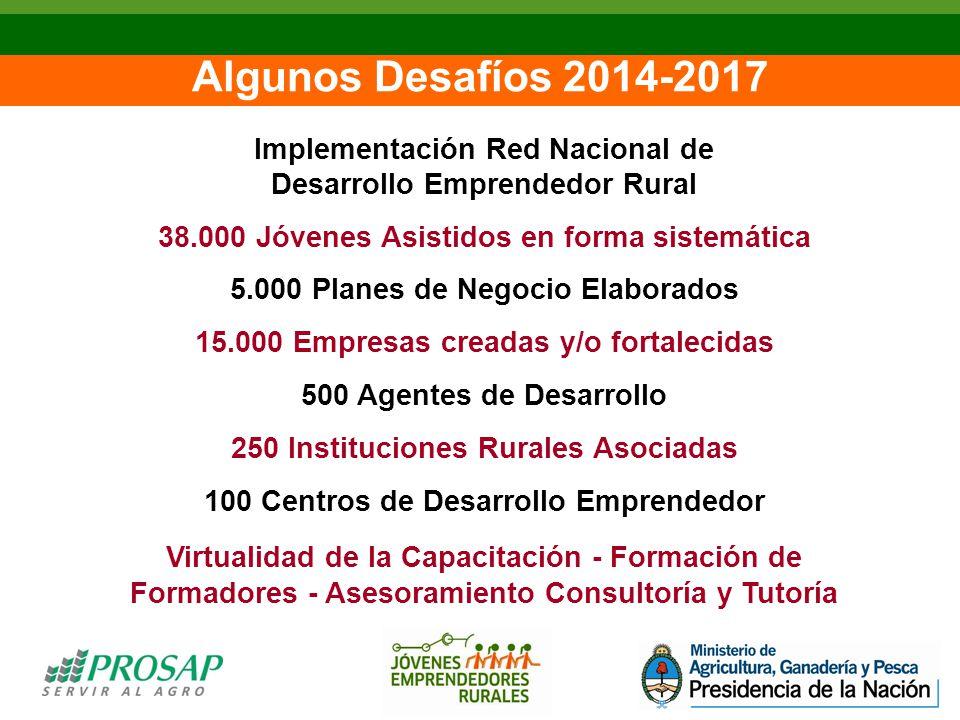 Algunos Desafíos 2014-2017 Implementación Red Nacional de Desarrollo Emprendedor Rural 38.000 Jóvenes Asistidos en forma sistemática 5.000 Planes de Negocio Elaborados 15.000 Empresas creadas y/o fortalecidas 500 Agentes de Desarrollo 250 Instituciones Rurales Asociadas 100 Centros de Desarrollo Emprendedor Virtualidad de la Capacitación - Formación de Formadores - Asesoramiento Consultoría y Tutoría