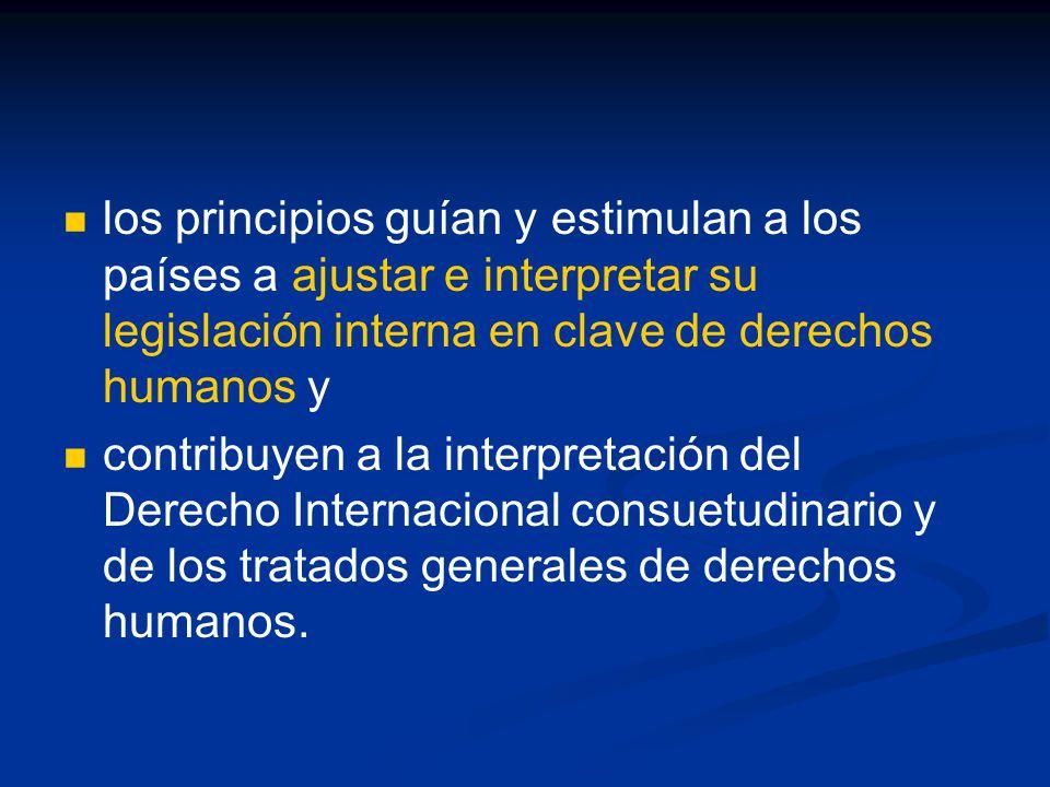los principios guían y estimulan a los países a ajustar e interpretar su legislación interna en clave de derechos humanos y contribuyen a la interpretación del Derecho Internacional consuetudinario y de los tratados generales de derechos humanos.