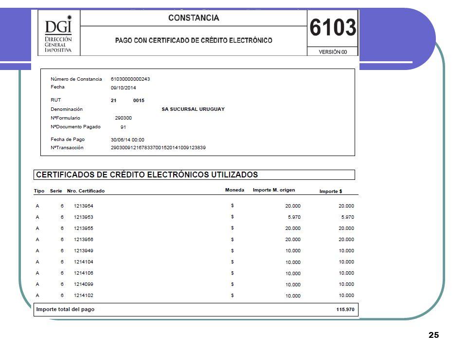 Dirección General Impositiva 25