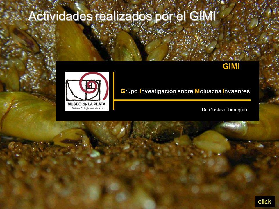 Actividades realizados por el GIMI GIMI Grupo Investigación sobre Moluscos Invasores Dr.