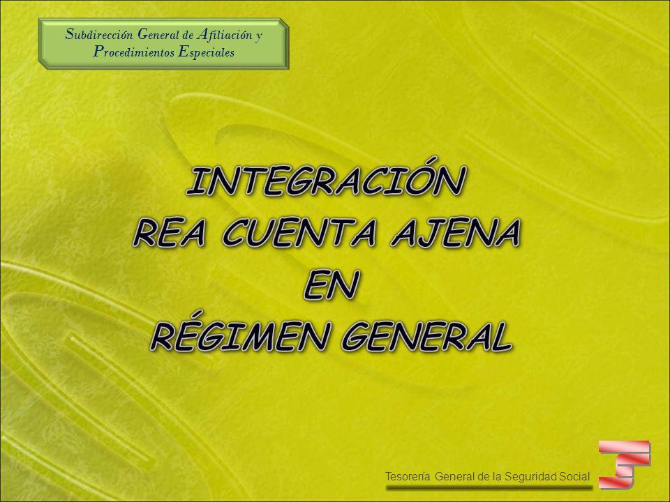 S ubdirección G eneral de A filiación y P rocedimientos E speciales Tesorería General de la Seguridad Social