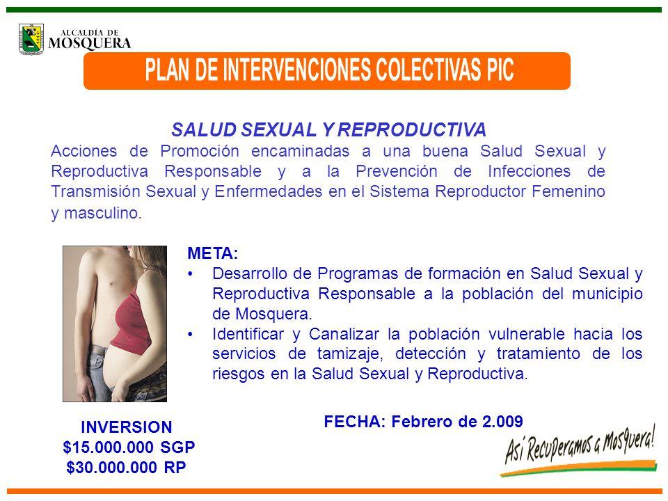 SALUD SEXUAL Y REPRODUCTIVA Acciones de Promoción encaminadas a una buena Salud Sexual y Reproductiva Responsable y a la Prevención de Infecciones de Transmisión Sexual y Enfermedades en el Sistema Reproductor Femenino y masculino.