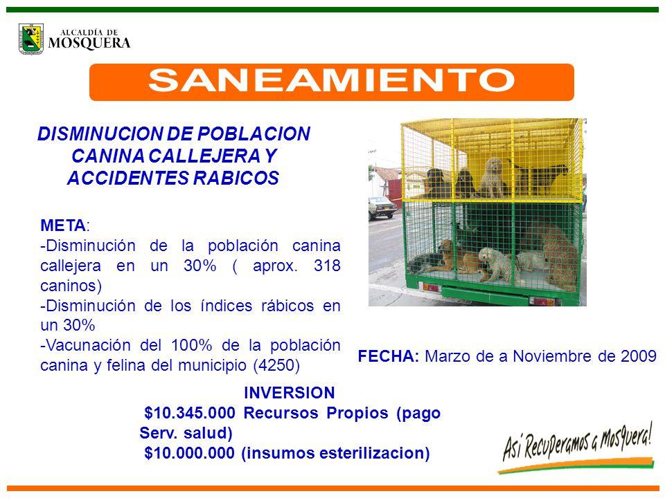 DISMINUCION DE POBLACION CANINA CALLEJERA Y ACCIDENTES RABICOS FECHA: Marzo de a Noviembre de 2009 META: -Disminución de la población canina callejera en un 30% ( aprox.