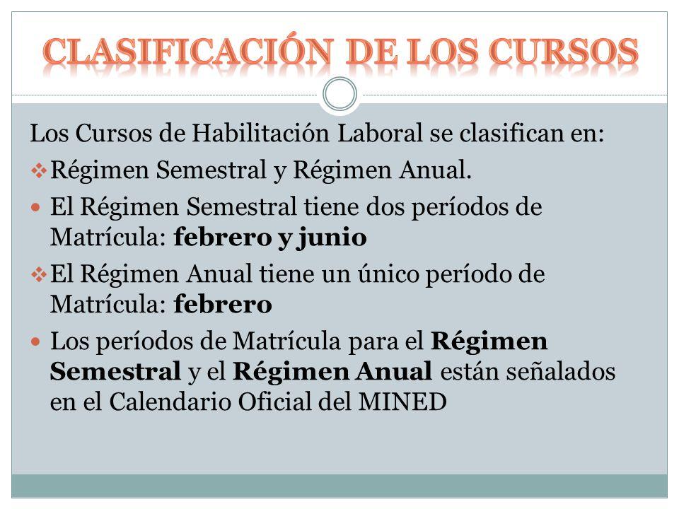 Los Cursos de Habilitación Laboral se clasifican en:  Régimen Semestral y Régimen Anual.