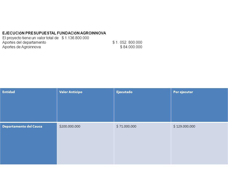EntidadValor AnticipoEjecutadoPor ejecutar Departamento del Cauca$200.000.000$ 71.000.000$ 129.000.000 EJECUCI Ó N PRESUPUESTAL FUNDACI Ó N AGROINNOVA El proyecto tiene un valor total de $ 1.136.800.000 Aportes del departamento $ 1.