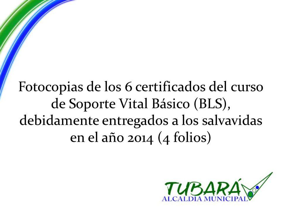 Fotocopias de los 6 certificados del curso de Soporte Vital Básico (BLS), debidamente entregados a los salvavidas en el año 2014 (4 folios)