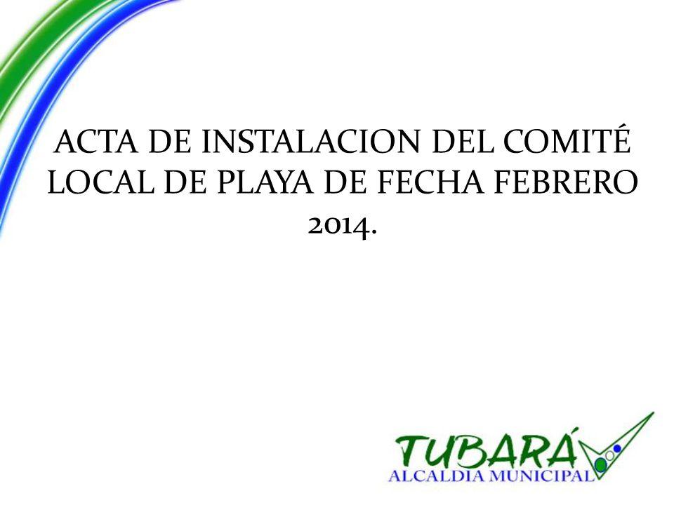 ACTA DE INSTALACION DEL COMITÉ LOCAL DE PLAYA DE FECHA FEBRERO 2014.