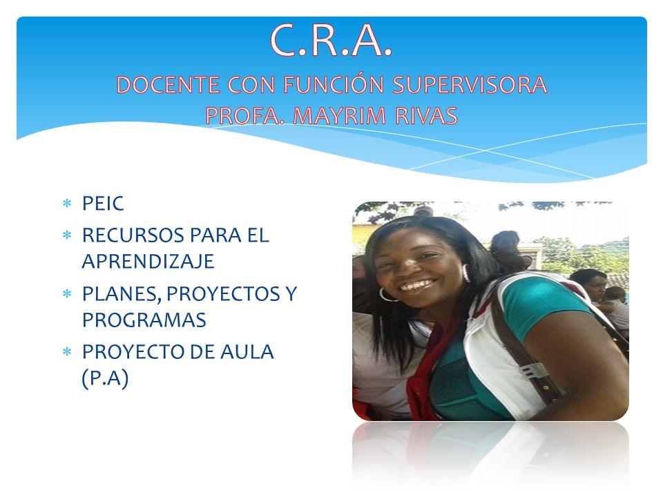  PEIC  RECURSOS PARA EL APRENDIZAJE  PLANES, PROYECTOS Y PROGRAMAS  PROYECTO DE AULA (P.A)