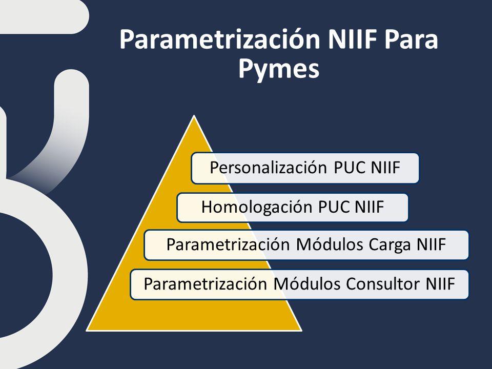 Parametrización NIIF Para Pymes Personalización PUC NIIF Homologación PUC NIIF Parametrización Módulos Carga NIIFParametrización Módulos Consultor NIIF