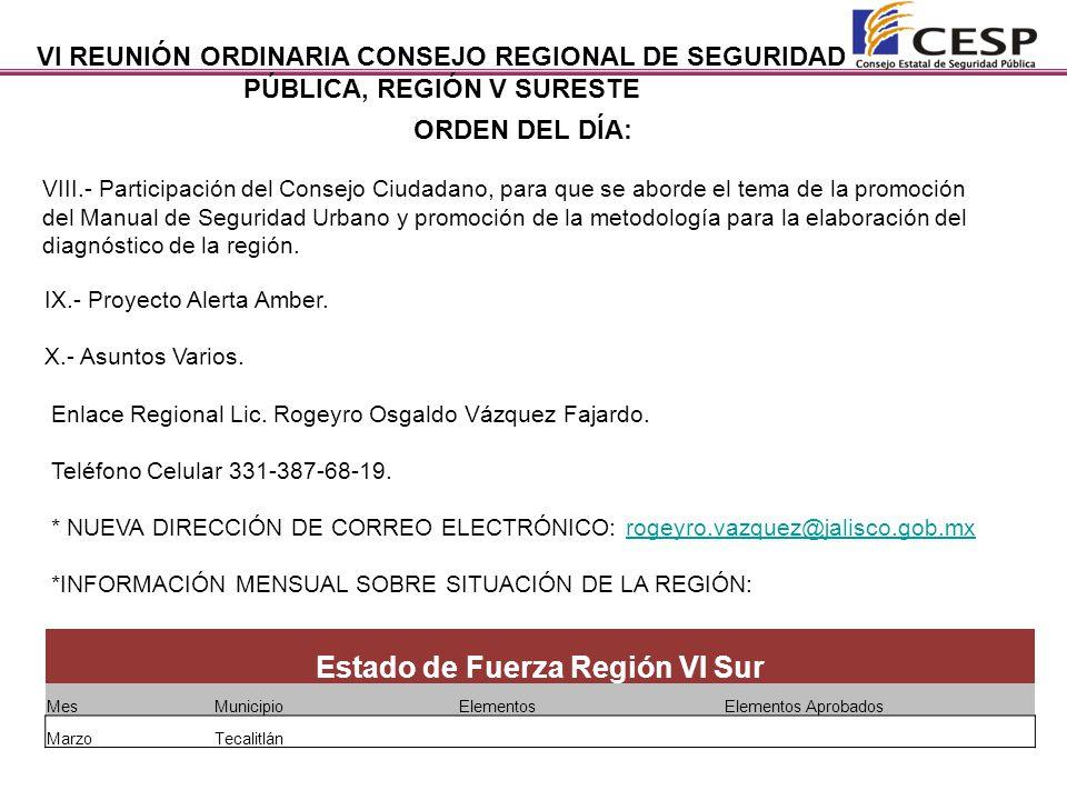 VI REUNIÓN ORDINARIA CONSEJO REGIONAL DE SEGURIDAD PÚBLICA, REGIÓN V SURESTE.