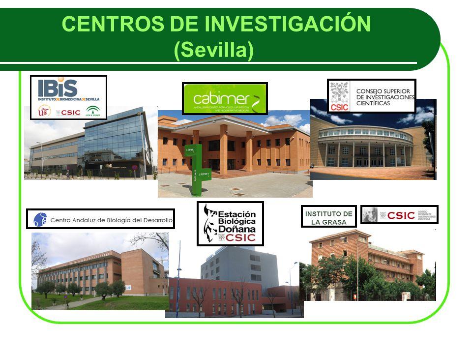 CENTROS DE INVESTIGACIÓN (Sevilla)