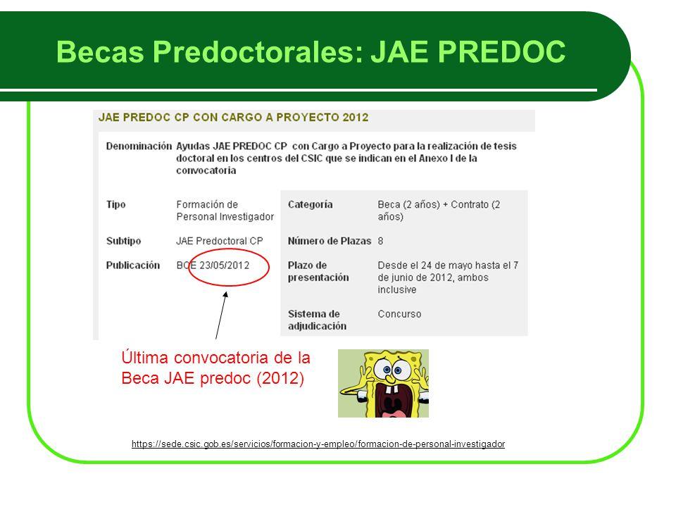 Última convocatoria de la Beca JAE predoc (2012) Becas Predoctorales: JAE PREDOC https://sede.csic.gob.es/servicios/formacion-y-empleo/formacion-de-personal-investigador