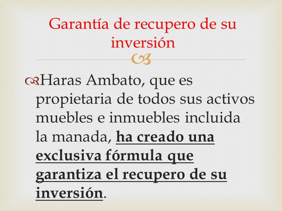   Haras Ambato, que es propietaria de todos sus activos muebles e inmuebles incluida la manada, ha creado una exclusiva fórmula que garantiza el recupero de su inversión.