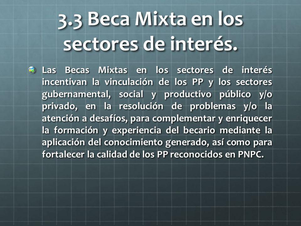 3.3 Beca Mixta en los sectores de interés.