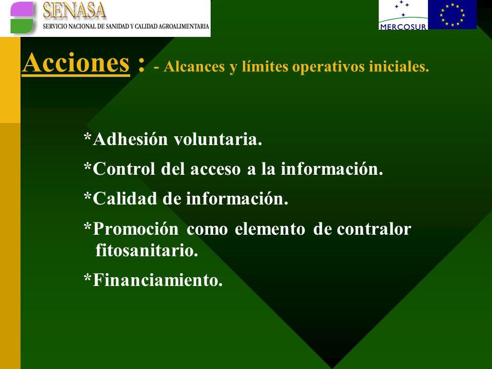 Acciones : - Alcances y límites operativos iniciales.