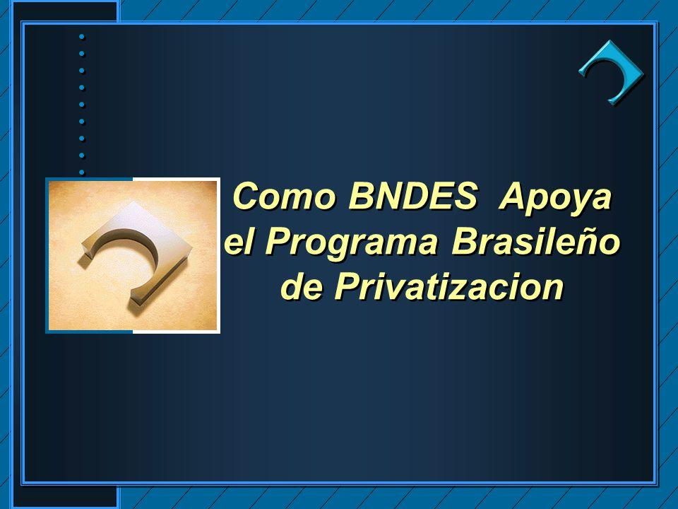 Como BNDES Apoya el Programa Brasileño de Privatizacion