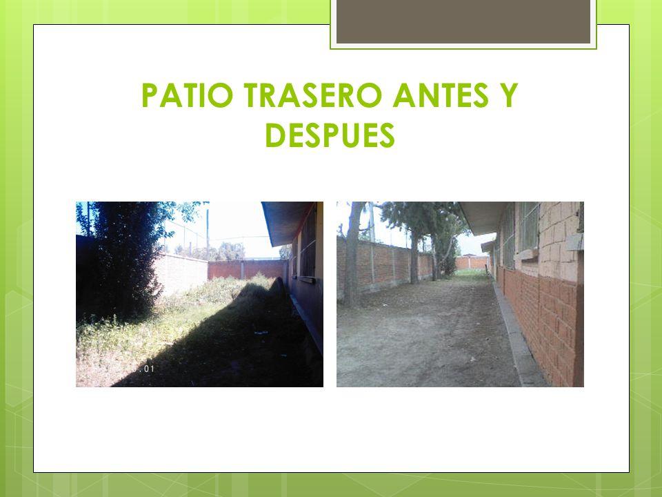 PATIO TRASERO ANTES Y DESPUES