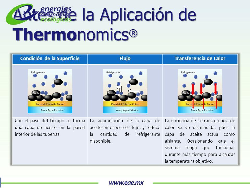Antes de la Aplicación de Thermonomics ®
