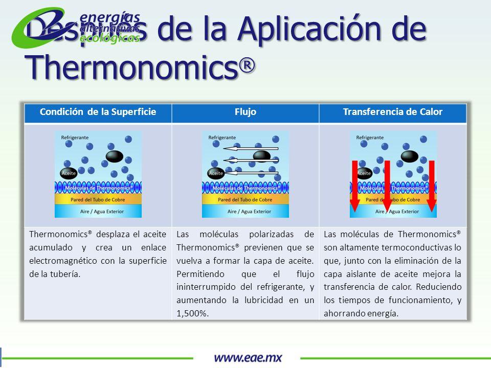 Después de la Aplicación de Thermonomics ®