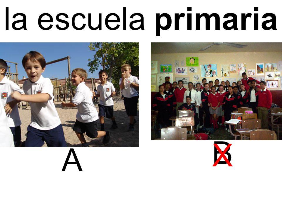la escuela primaria A B X
