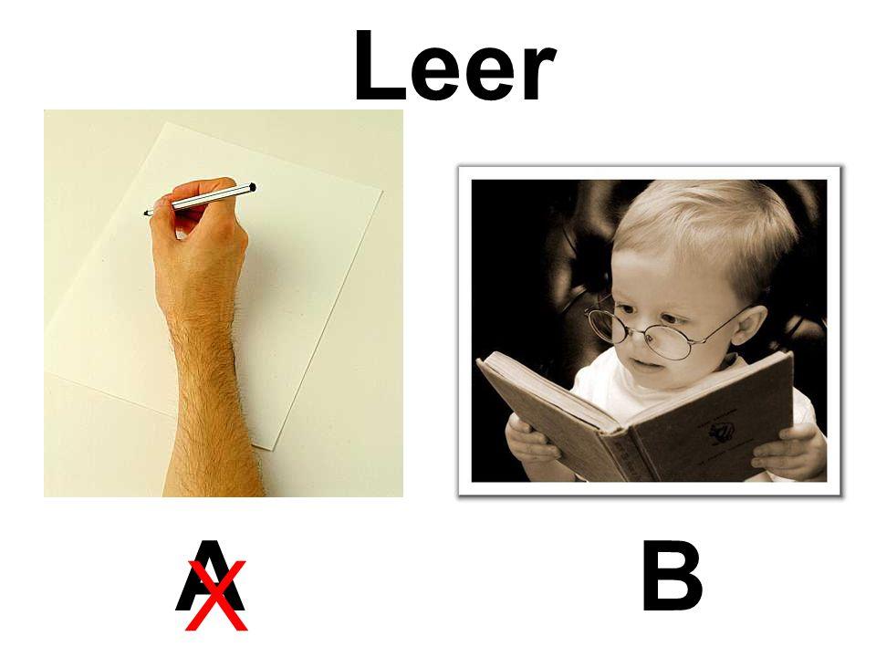 Leer AB X
