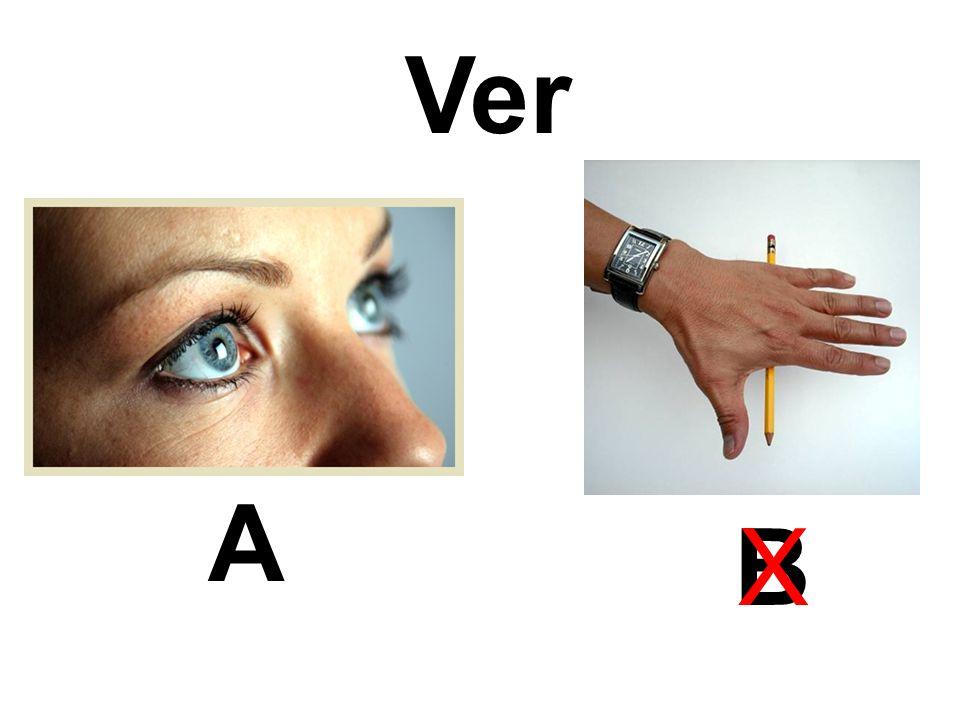 Ver A BX