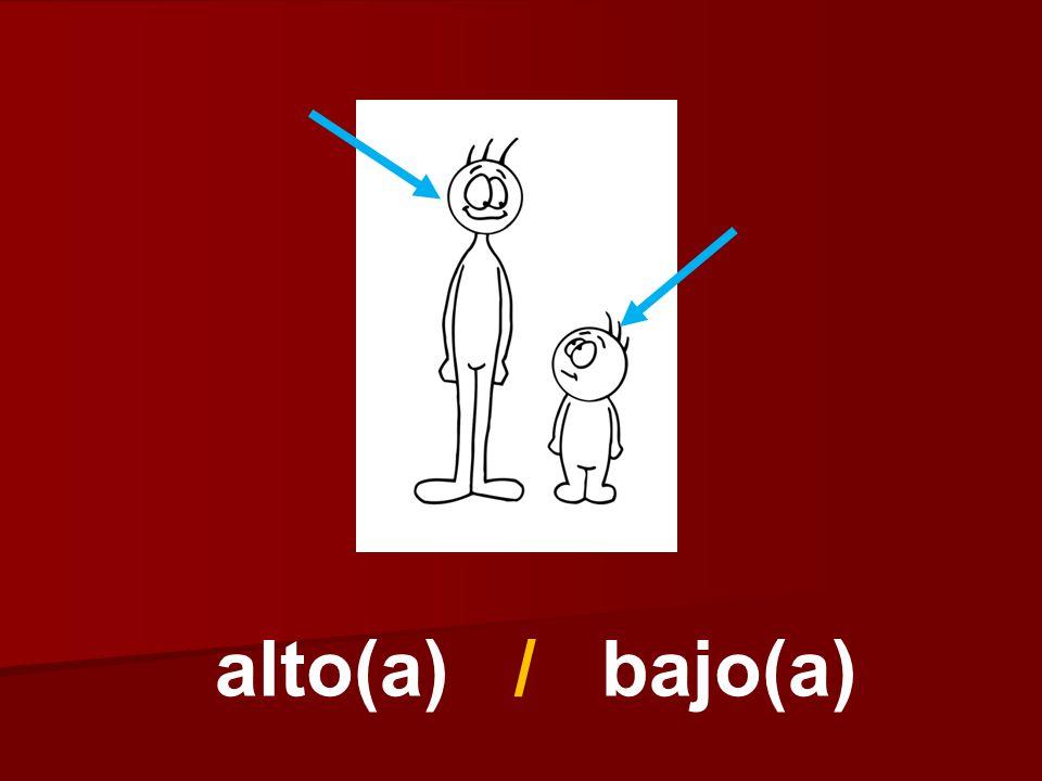 alto(a) / bajo(a)