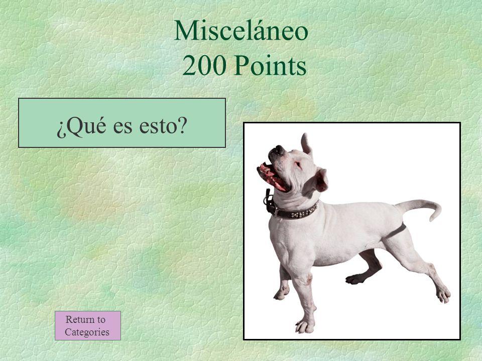 Misceláneo 100 Points El regalo Return to Categories