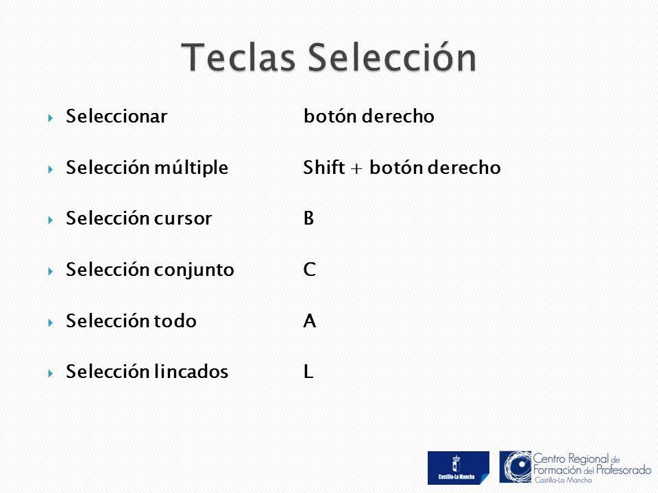  Seleccionar botón derecho  Selección múltiple Shift + botón derecho  Selección cursorB  Selección conjunto C  Selección todoA  Selección lincadosL