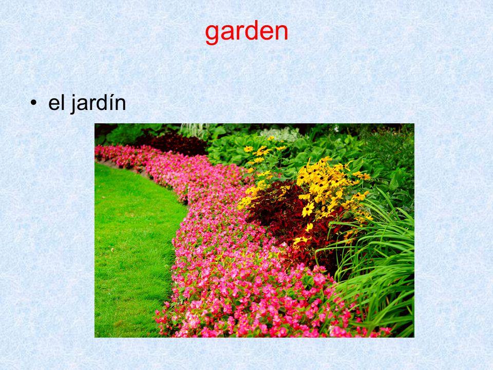 garden el jardín