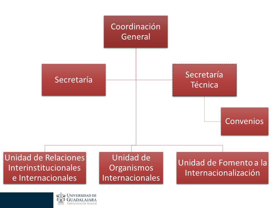 Coordinación General Unidad de Relaciones Interinstitucionales e Internacionales Unidad de Organismos Internacionales Unidad de Fomento a la Internacionalización Secretaría Secretaría Técnica Convenios