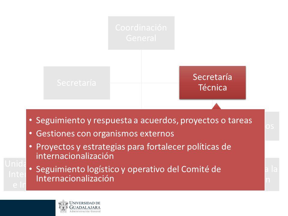 Secretaría Técnica Seguimiento y respuesta a acuerdos, proyectos o tareas Gestiones con organismos externos Proyectos y estrategias para fortalecer políticas de internacionalización Seguimiento logístico y operativo del Comité de Internacionalización