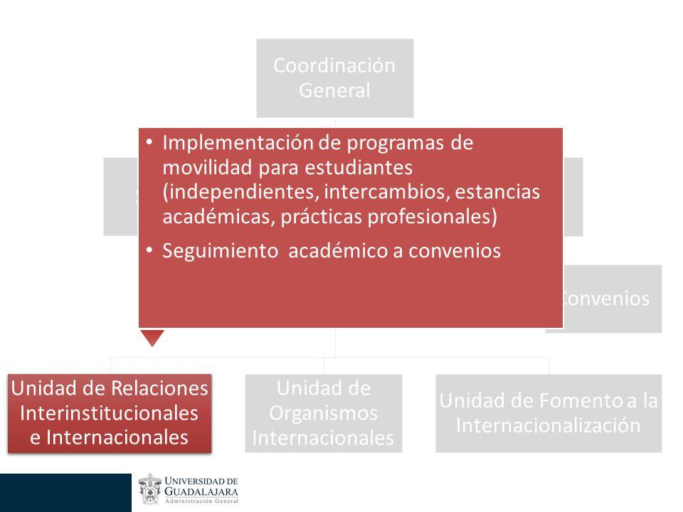 Implementación de programas de movilidad para estudiantes (independientes, intercambios, estancias académicas, prácticas profesionales) Seguimiento académico a convenios Unidad de Relaciones Interinstitucionales e Internacionales