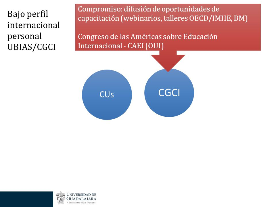 CGCI CUs Compromiso: difusión de oportunidades de capacitación (webinarios, talleres OECD/IMHE, BM) Congreso de las Américas sobre Educación Internacional - CAEI (OUI) Bajo perfil internacional personal UBIAS/CGCI