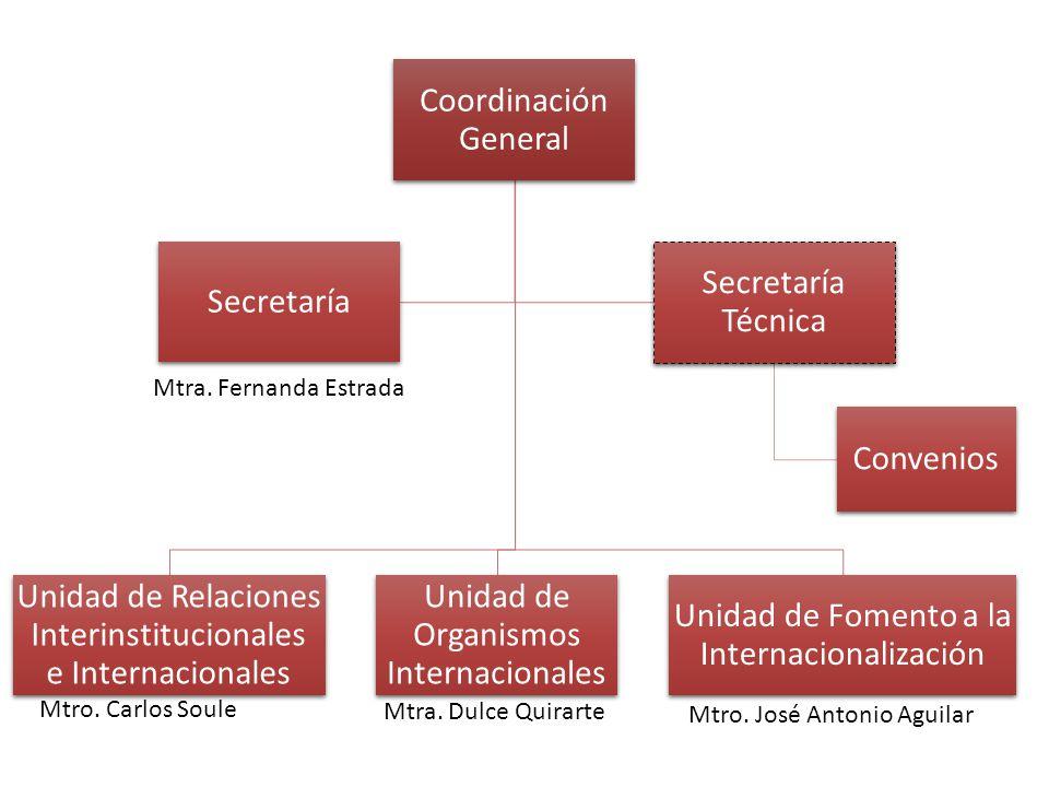 Coordinación General Unidad de Relaciones Interinstitucionales e Internacionales Unidad de Organismos Internacionales Unidad de Fomento a la Internacionalización Secretaría Secretaría Técnica Convenios Mtra.