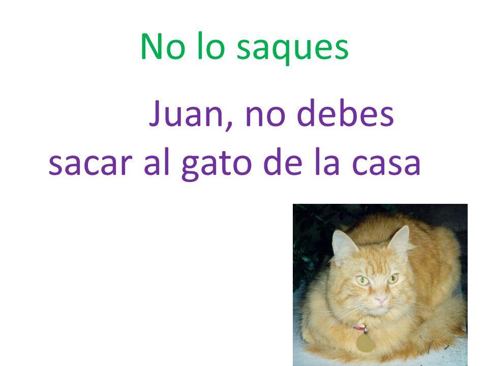 No lo saques Juan, no debes sacar al gato de la casa