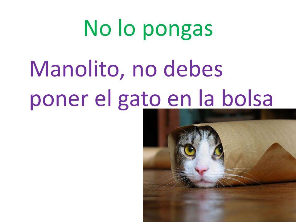 No lo pongas Manolito, no debes poner el gato en la bolsa