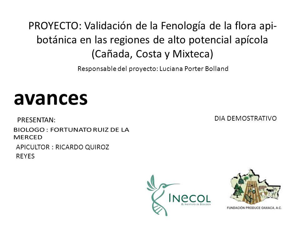 APICULTOR : RICARDO QUIROZ REYES DIA DEMOSTRATIVO PROYECTO: Validación de la Fenología de la flora api- botánica en las regiones de alto potencial apícola (Cañada, Costa y Mixteca) avances Responsable del proyecto: Luciana Porter Bolland