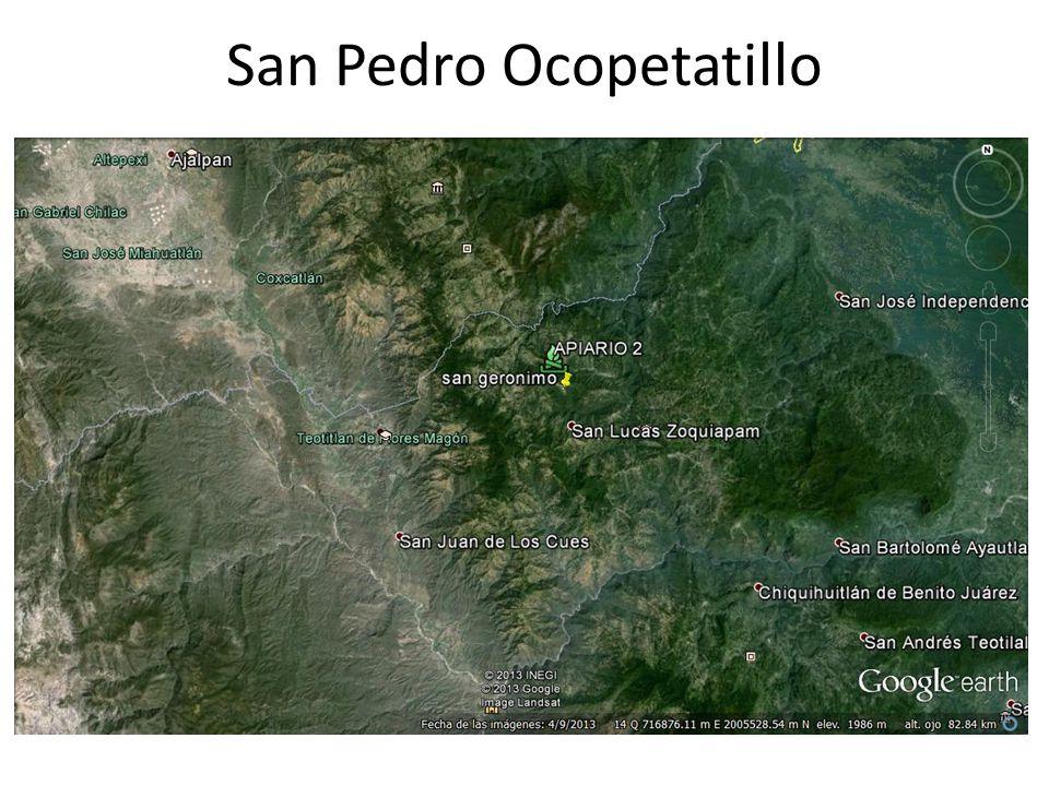 San Pedro Ocopetatillo