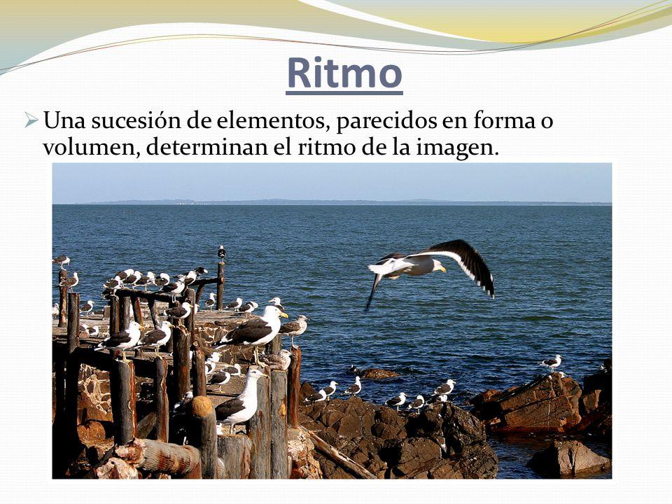 Ritmo  Una sucesión de elementos, parecidos en forma o volumen, determinan el ritmo de la imagen.