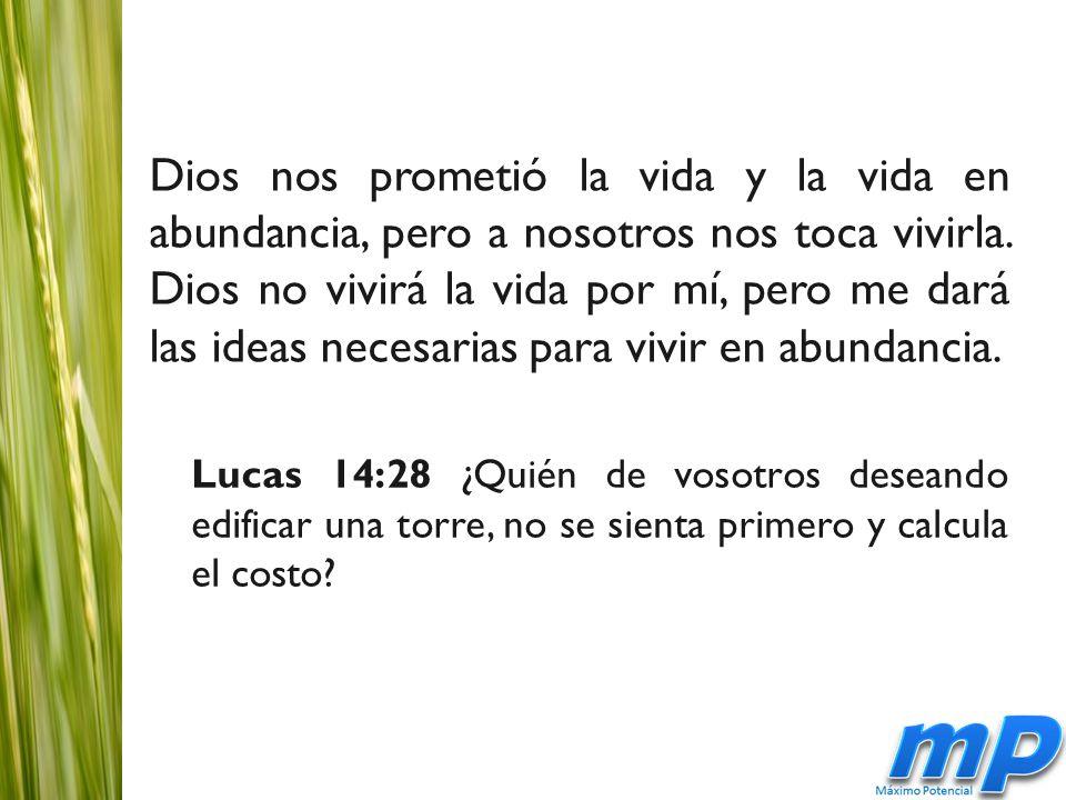 Dios nos prometió la vida y la vida en abundancia, pero a nosotros nos toca vivirla.