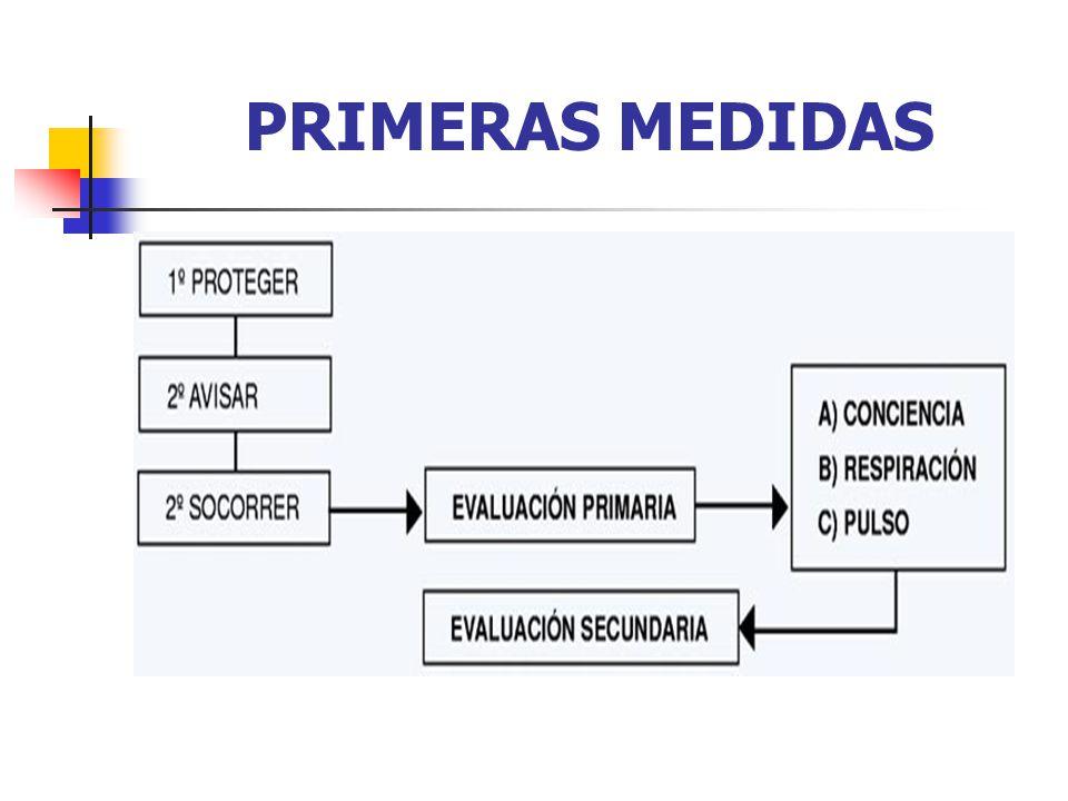 PRIMERAS MEDIDAS