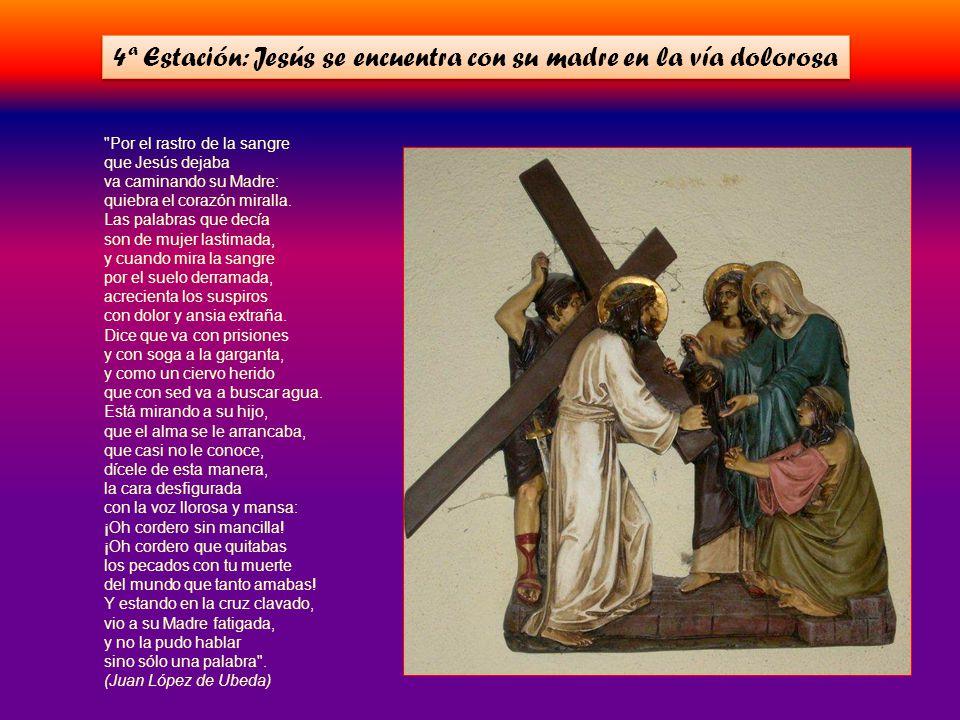 En la cruz está la vida y el consuelo y ella sola es el camino para el cielo.