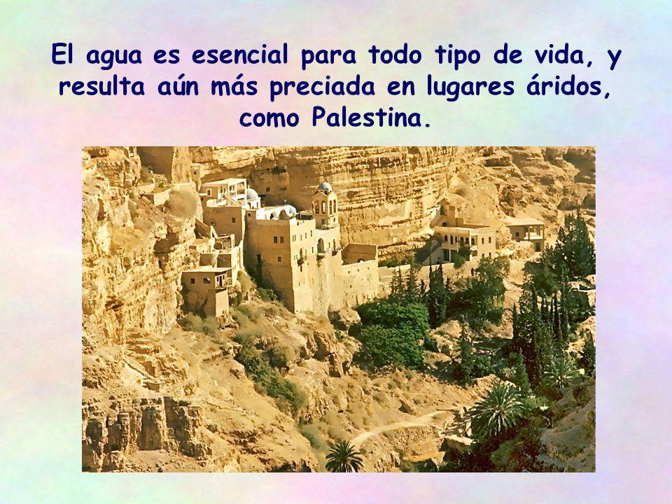 Se reserva un regalo para ella, el regalo de un agua viva: El que tenga sed, que venga a mí, y beba el que crea en mí lo oirán gritar más tarde en el templo de Jerusalén (Jn 7,37)