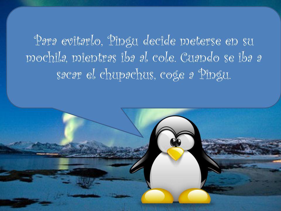 Para evitarlo, Pingu decide meterse en su mochila, mientras iba al cole.