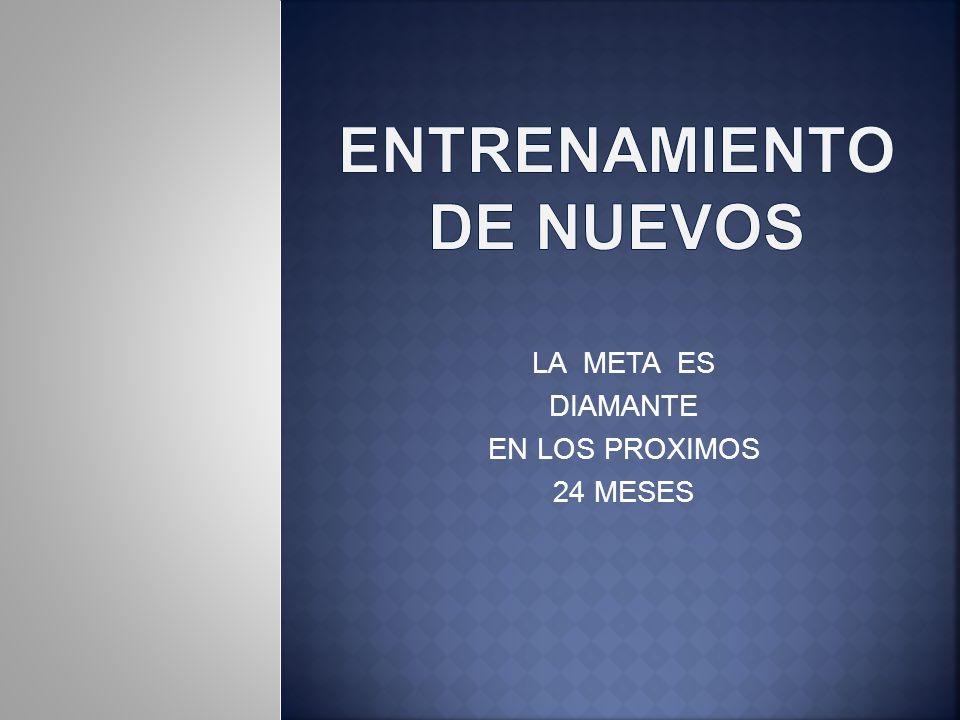 LA META ES DIAMANTE EN LOS PROXIMOS 24 MESES